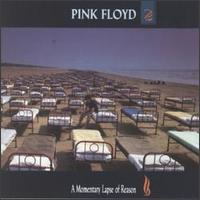 A Momentary Lapse of Reason - Album Cover